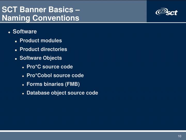 SCT Banner Basics –
