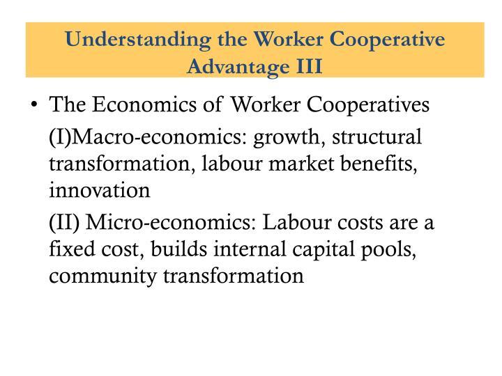Understanding the Worker Cooperative Advantage III