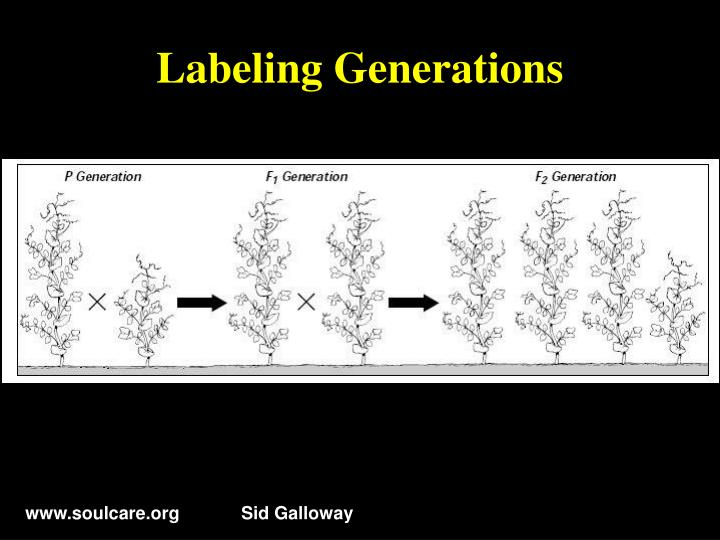 Labeling Generations