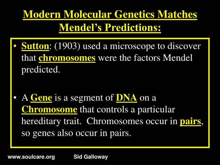 Modern Molecular Genetics Matches Mendel's Predictions: