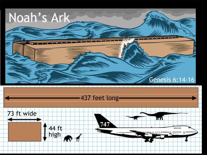 Noah's Ark – New Jan 2004