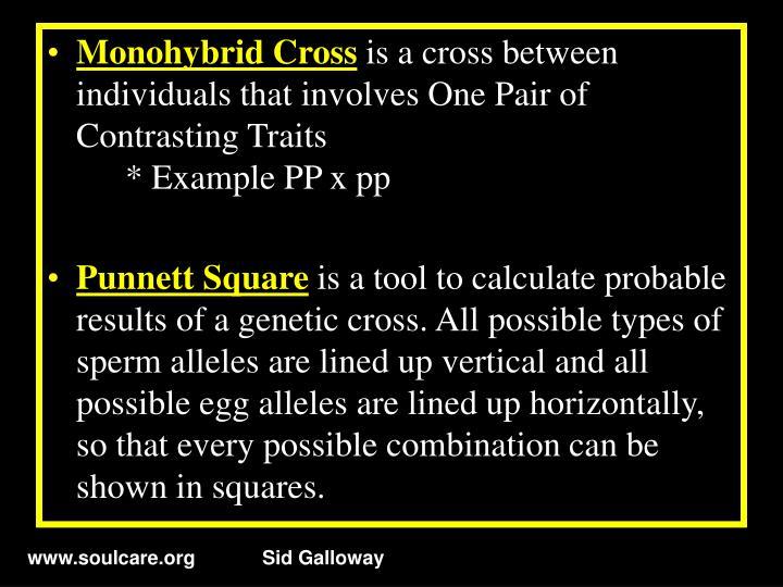 Monohybrid Cross