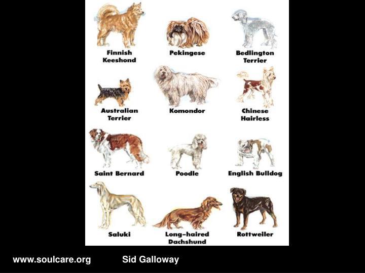 www.soulcare.orgSid Galloway
