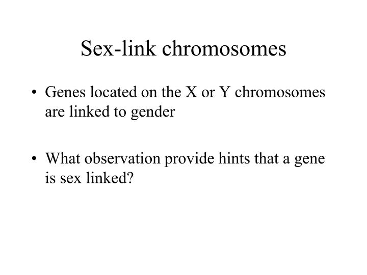 Sex-link chromosomes