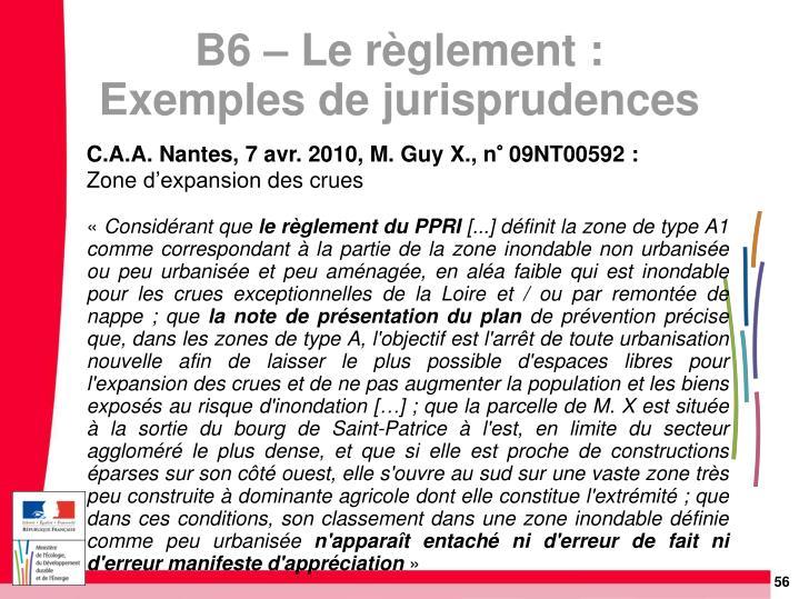 C.A.A. Nantes, 7 avr. 2010, M. Guy X., n° 09NT00592: