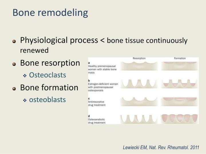 bone ossification ppt