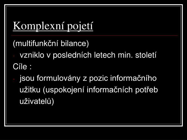 Komplexní pojetí