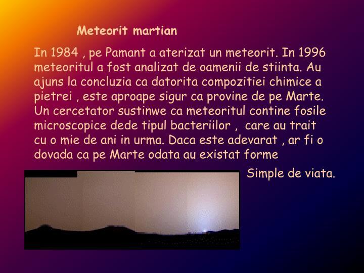 Meteorit martian