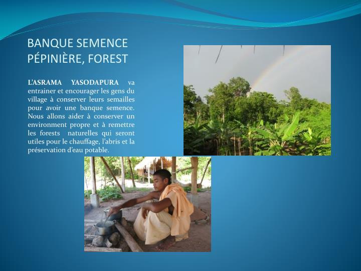 BANQUE SEMENCE PÉPINIÈRE, FOREST