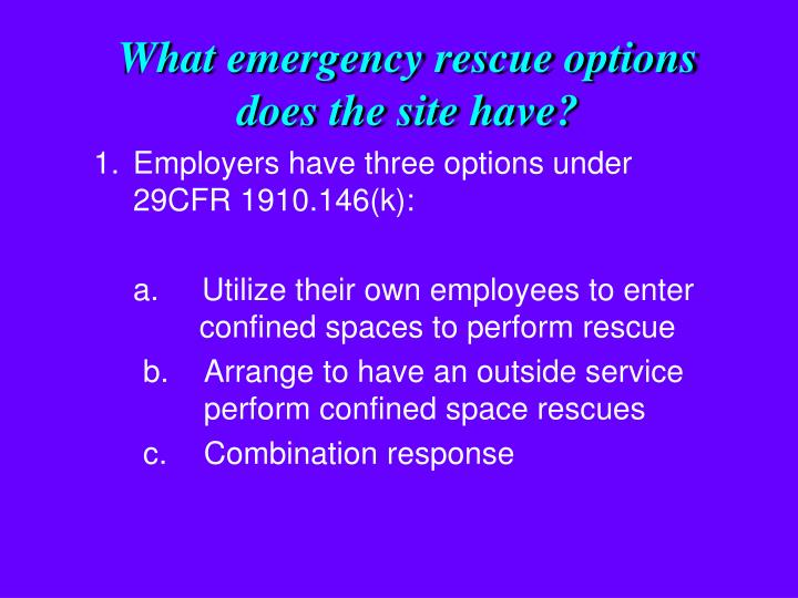 What emergency rescue options does the site have?