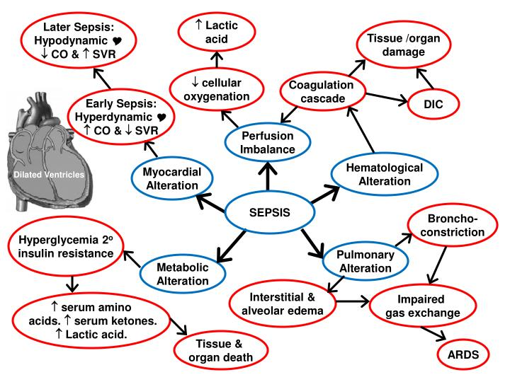 Later Sepsis:
