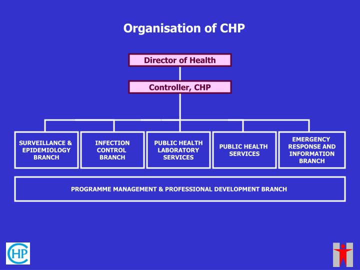 Organisation of CHP
