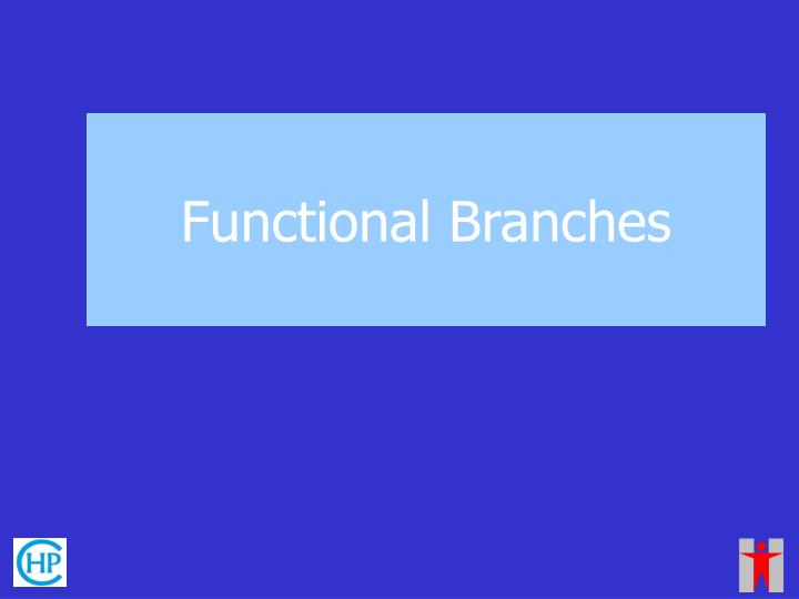 Functional Branches