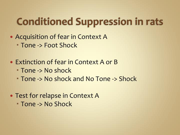 Conditioned Suppression in rats