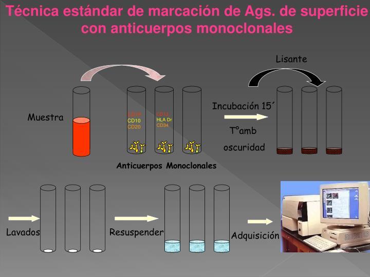 Técnica estándar de marcación de Ags. de superficie