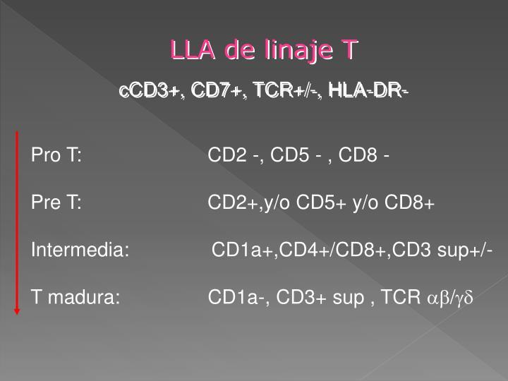 LLA de linaje T