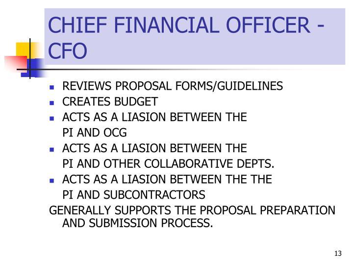 CHIEF FINANCIAL OFFICER - CFO