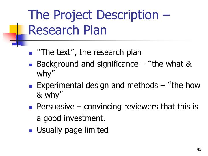 The Project Description – Research Plan