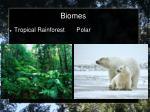 biomes10