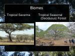 biomes8