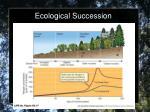 ecological succession5