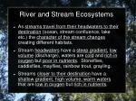 river and stream ecosystems