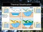 thermal stratification1