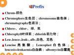 prefix1