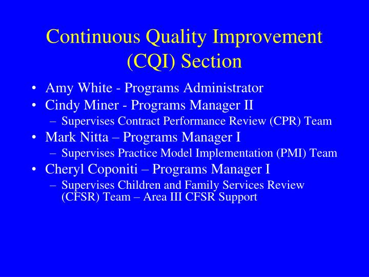 Continuous Quality Improvement (CQI) Section