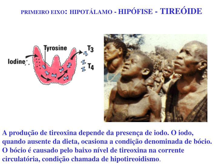 PRIMEIRO EIXO