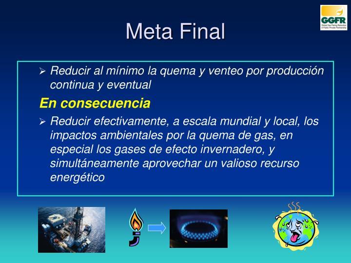 Meta Final