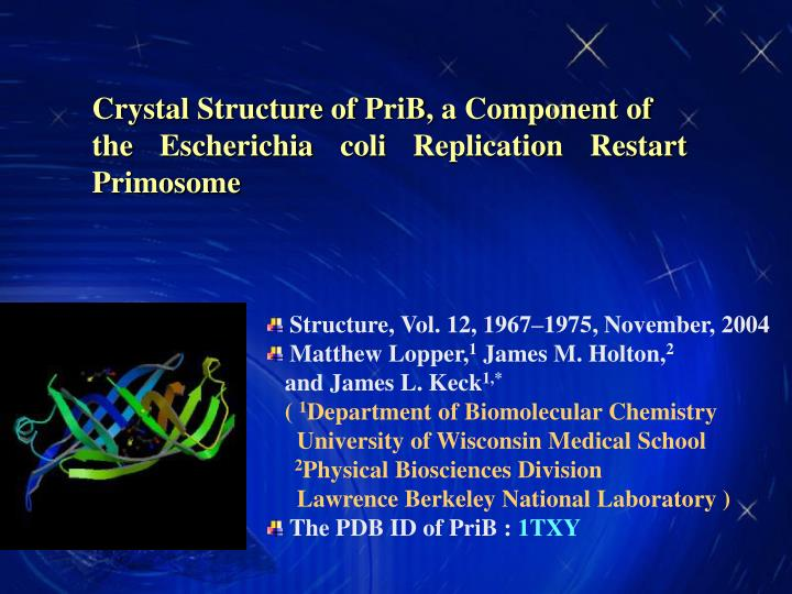 Crystal Structure of PriB, a Component of