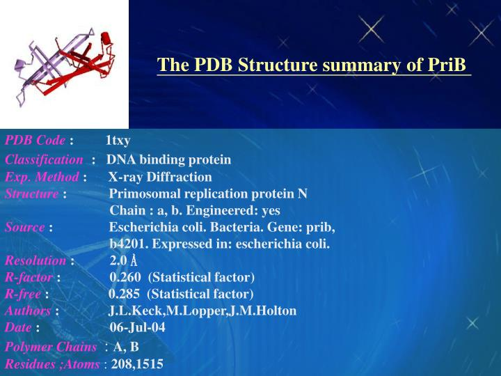The PDB Structure summary of PriB