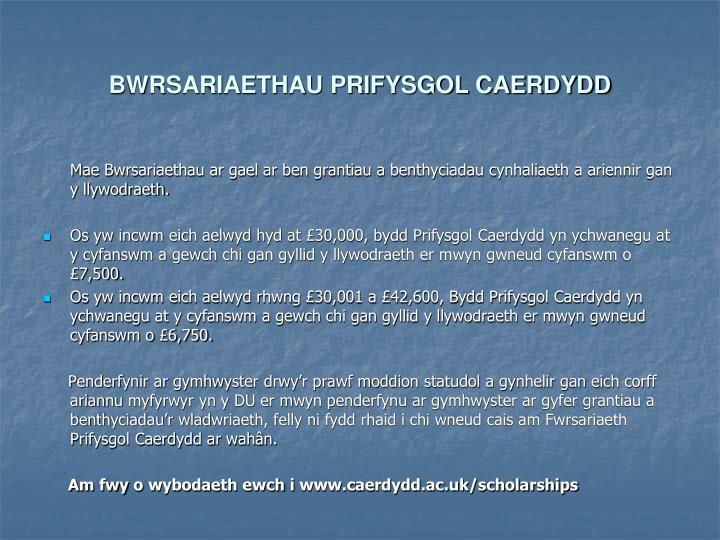 BWRSARIAETHAU PRIFYSGOL CAERDYDD