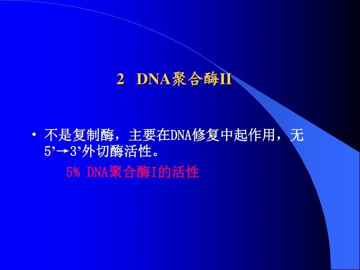 2   DNA