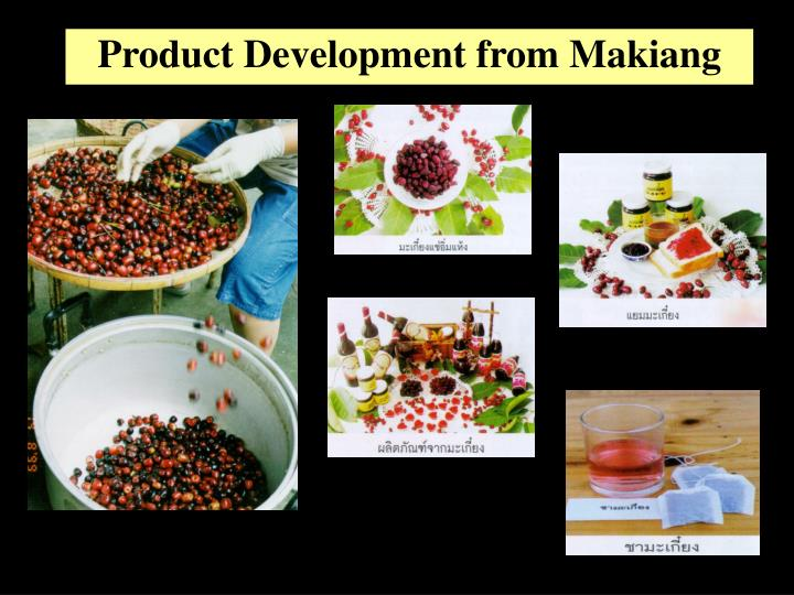 Product Development from Makiang