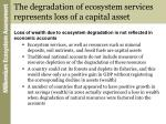 the degradation of ecosystem services represents loss of a capital asset