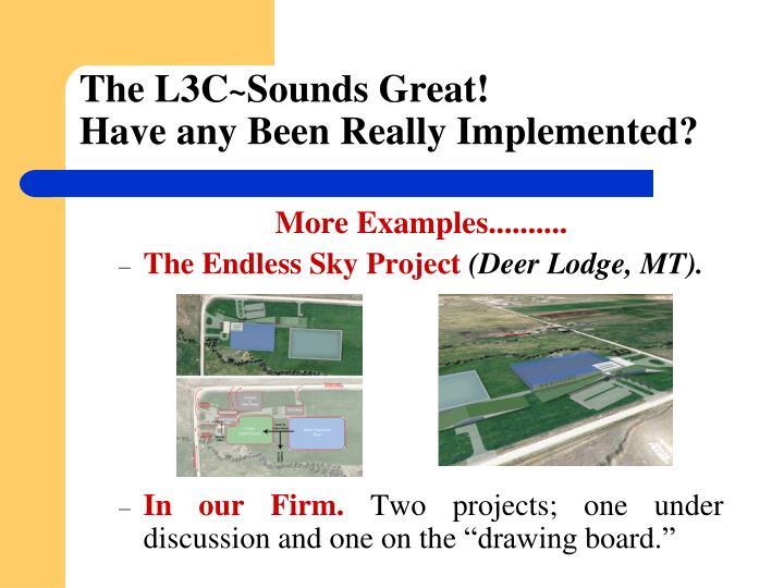 The L3C