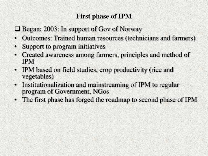 First phase of IPM