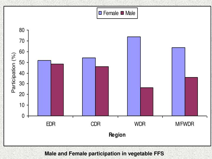 Male and Female participation