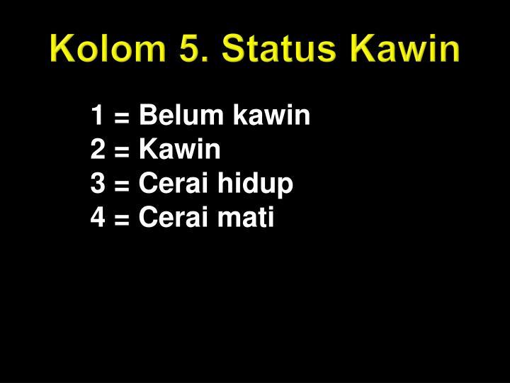 Kolom 5. Status Kawin