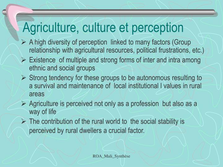 Agriculture, culture et perception