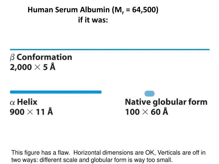 Human Serum Albumin (M