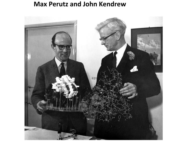 Max Perutz and John Kendrew