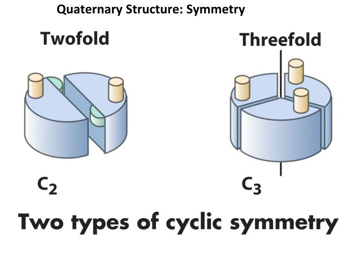 Quaternary Structure: Symmetry