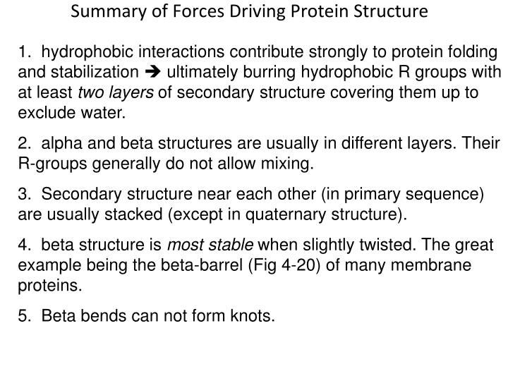 Summary of Forces Driving Protein Structure