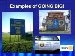examples of going big