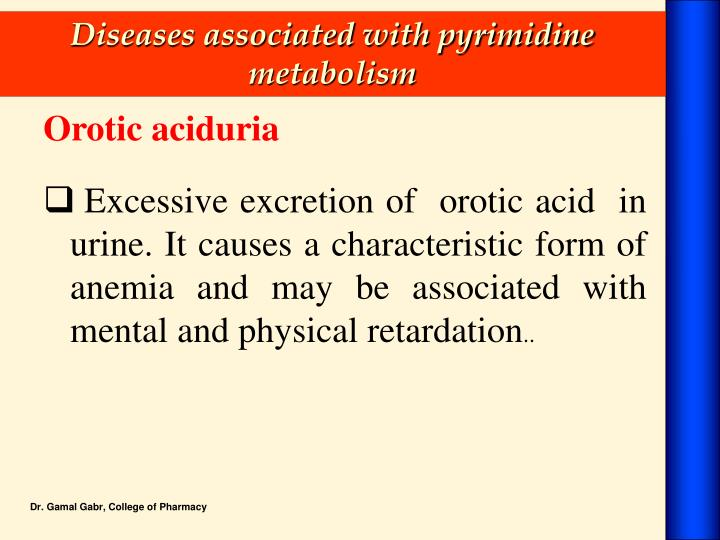 Diseases associated with pyrimidine metabolism