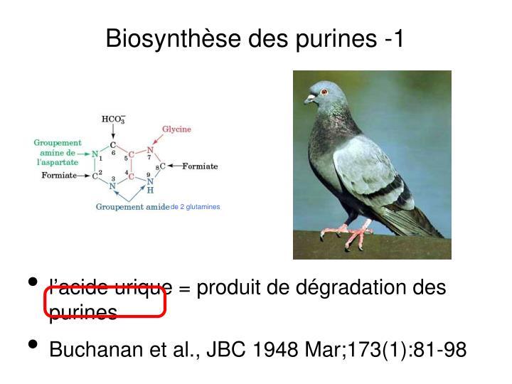 Biosynthèse des purines -1