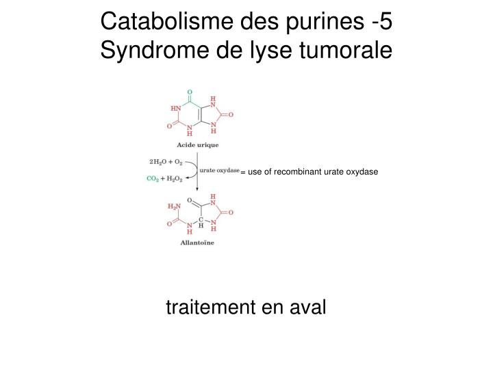 Catabolisme des purines -5